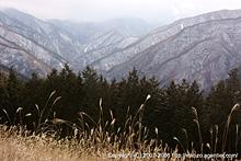 冬山へ by α700