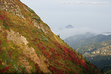 山田峠からの眺め