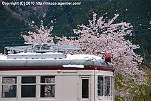 桜と雪とデハ107