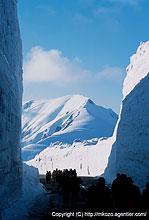 立山・室堂の雪の大谷